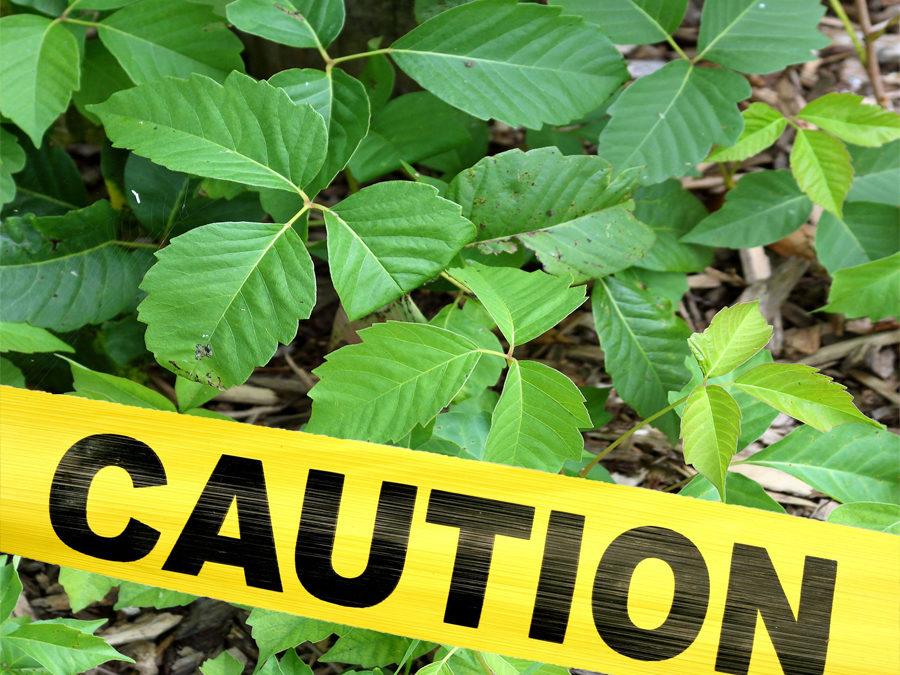 Caution: Danger Ahead