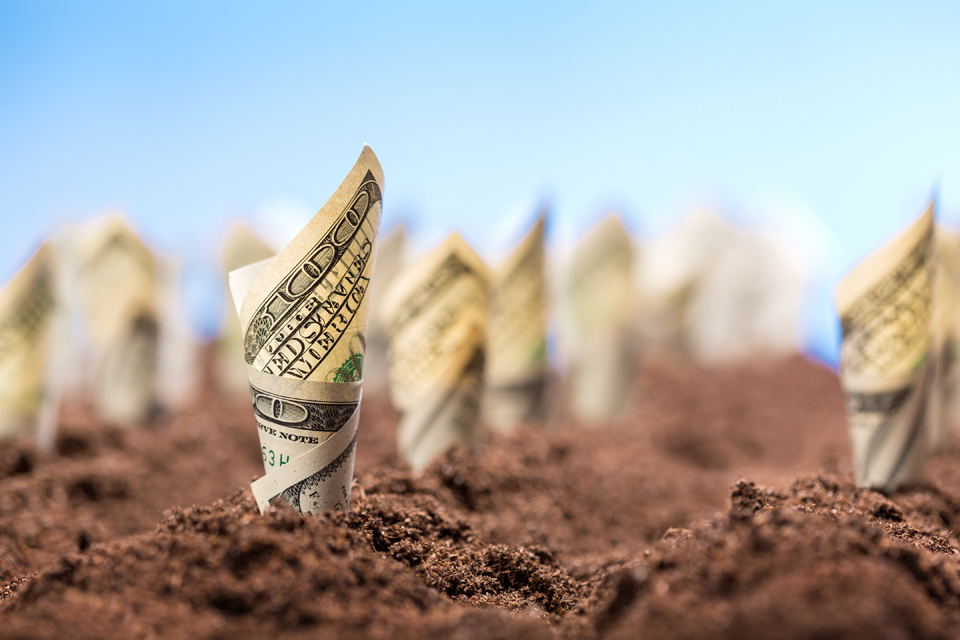 Landscaping and Return on Investment